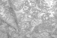 Textura Desenho Fundo Tela de prata do laço Você caiu no lo Fotos de Stock Royalty Free