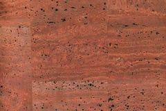Textura detalhada alta da placa da cortiça, fim acima Fotografia de Stock Royalty Free