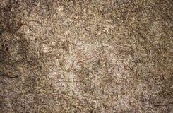 Textura detalhada resistida do fundo da madeira compensada Fotografia de Stock