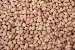 Textura do amendoim Fotos de Stock