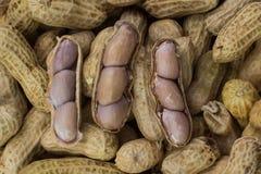 Textura do amendoim Foto de Stock