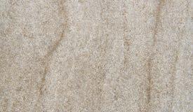 Textura do arenito Imagem de Stock
