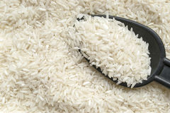Textura do arroz imagem de stock