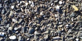 Textura do assoalho com pedras Assoalho seco fotos de stock royalty free