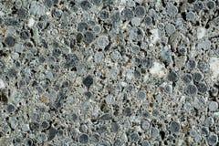Textura do bloco de cimento imagens de stock royalty free