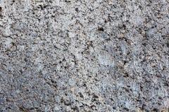 Textura do bloco de cinza Fotografia de Stock
