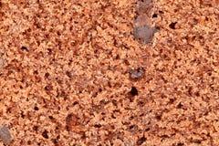 Textura do bolo de chocolate Imagens de Stock