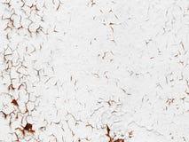 Textura do branco pintada, metal corroído Imagens de Stock