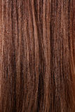Textura do cabelo. Fotos de Stock