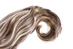 Textura do cabelo Imagem de Stock