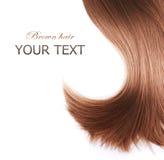 Textura do cabelo de Brown Imagem de Stock
