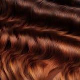 Textura do cabelo de Brown. Imagem de alta qualidade. Imagens de Stock