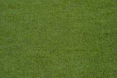 Textura do campo de esportes da tampa da erva Usado no tênis, golfe, vagabundos foto de stock royalty free