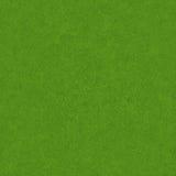 Textura do campo de grama verde Fotografia de Stock Royalty Free