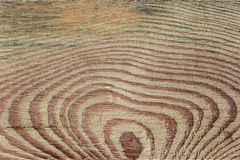 Textura do carvalho Imagem de Stock