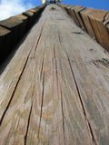 Textura do carvalho Ridge Climbing Tower Fotos de Stock