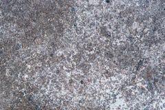 Textura do cimento Foto de Stock