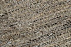 A textura do clássico cobre com sapê o telhado Fotos de Stock Royalty Free