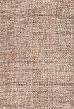 Textura do cânhamo Imagens de Stock