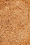 Textura do coco Foto de Stock