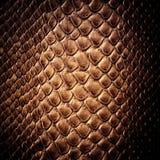 Textura do couro da pele de serpente Imagens de Stock Royalty Free