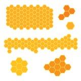 Textura do favo de mel da abelha Imagem de Stock