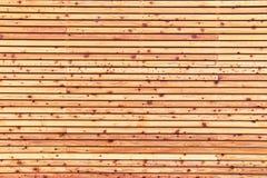 Textura do forro de madeira natural Imagem de Stock