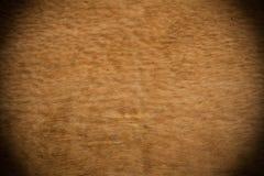 Textura do fundo Imagens de Stock