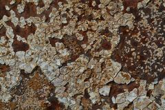 Textura do fundo do aço oxidado imagem de stock