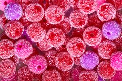 Textura do fundo do close-up multi-colorido dos grânulos fotografia de stock royalty free