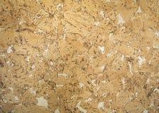 Textura do fundo da cortiça (vista detalhada) Fotografia de Stock