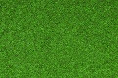 Textura do fundo da grama verde foto de stock