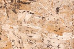 Textura do fundo da madeira compensada Imagens de Stock