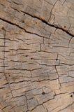 Textura do fundo da madeira resistida Imagens de Stock Royalty Free