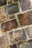 Textura do fundo da parede de pedra Imagem de Stock
