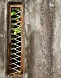 Textura do fundo da parede do Grunge Foto de Stock