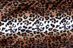 Textura do fundo da pele do leopardo Foto de Stock Royalty Free