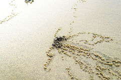 Textura do fundo da praia Fotografia de Stock
