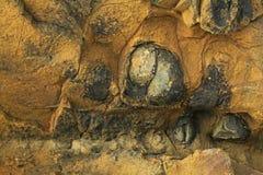 Textura do fundo da rocha marrom com cercos escuros fotos de stock royalty free