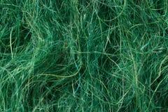 Textura do fundo de lãs verdes Imagem de Stock