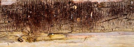 Textura do fundo de madeira velho da cerca Foto de Stock