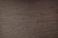 Textura do fundo de uma árvore marrom imagens de stock
