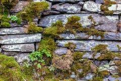 Textura do fundo de uma parede drystone foto de stock