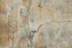 textura do fundo do cimento Imagens de Stock