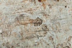 textura do fundo do cimento Imagem de Stock