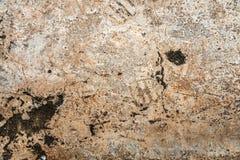textura do fundo do cimento Fotos de Stock