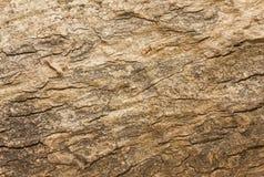 Textura do fundo do feixe de madeira resistido com um nó Fotografia de Stock Royalty Free