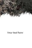 Textura do fundo do frame de Grunge Fotografia de Stock Royalty Free