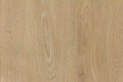 Textura do fundo material de madeira Fotografia de Stock