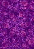 Textura do fundo no roxo Imagens de Stock Royalty Free
